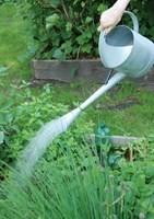 Zahradní konev s kropítkem