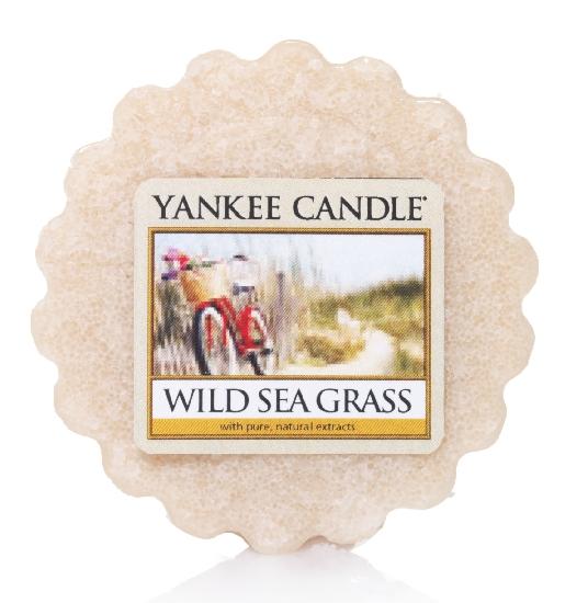 YANKEE CANDLE vosk - Wild sea grass 22g
